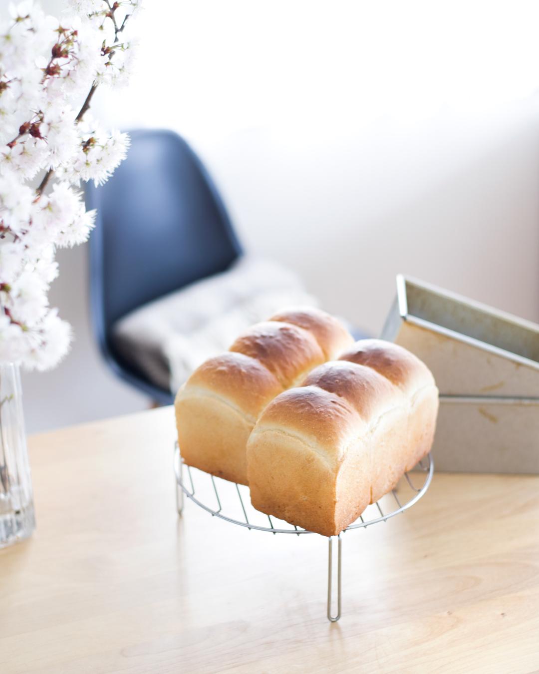 わんこも食べられる、超素朴パン。